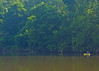 Lone kayaker on Rappannock River
